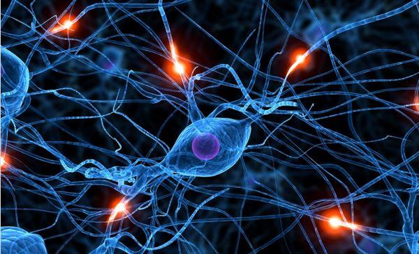 cerebro inconsciente