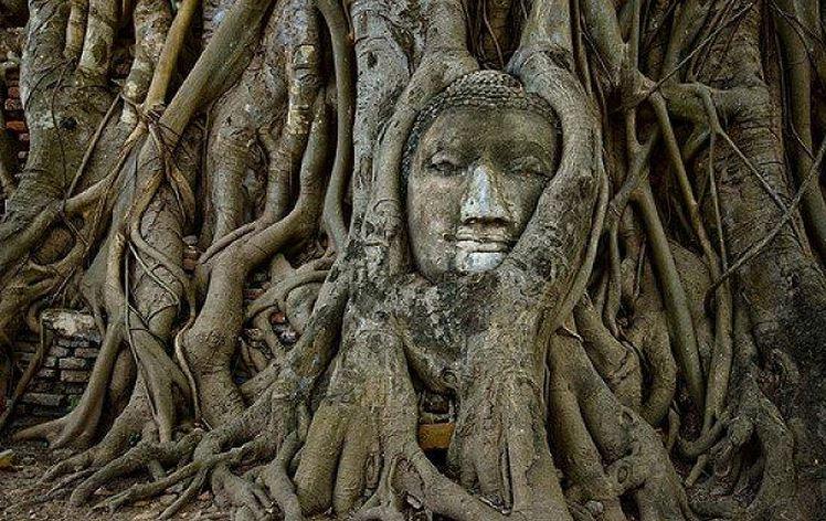 Ciudad de Ayutthaya de Tailandia es la ubicación de una de las estatuas budistas más inusuales del mundo