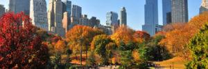 Central Park, un parque con encanto