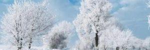 Como sobrevivir a la melancolía invernal